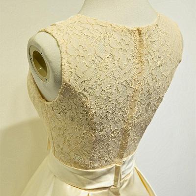 Elegant Lace Taffeta Short Bridesmaid Dresses Cute Zipper Mini Cocktail Dress with Sash_3