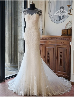 Vintage Long Sleeve Mermaid Tulle Bridal Gown New Arrival Court Train Wedding Dresses_1