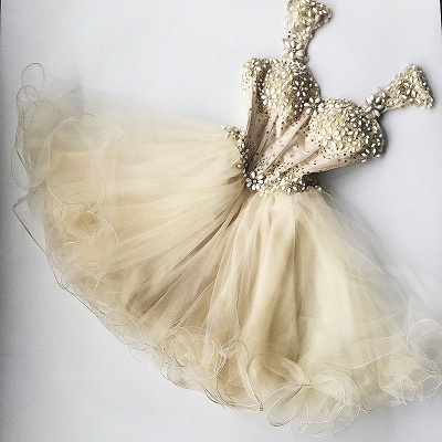 Beaded Flowers Champagne Homecoming Dresses   Organza Short Appliques Hoco Dress_3