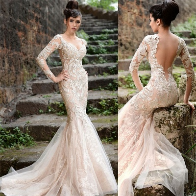 Alluring Sheer Tulle See Through Back Wedding Dresses Mermaid Long Sleeve Ivory Lace Bridal Gowns Online_3