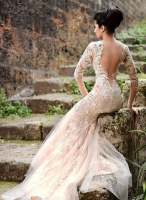 Alluring Sheer Tulle See Through Back Wedding Dresses Mermaid Long Sleeve Ivory Lace Bridal Gowns Online_4