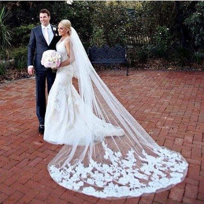 Mermaid Wedding Gowns Online V-neck Lace Bride Dresses with Wedding Veil_5