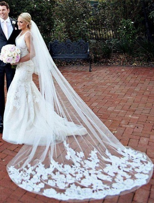 Mermaid Wedding Gowns Online V-neck Lace Bride Dresses with Wedding Veil_1
