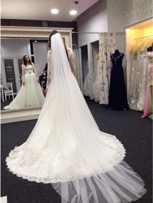 Lace Vestidos De Noiva Plus Size Wedding Dresses Long Sleeve Scoop Neck Bridal Gown with White Veil_2