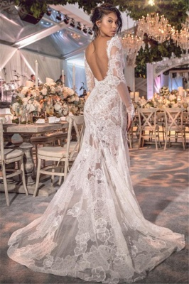 Open Back See Through Wedding Dresses Long Sleeve Lace Bridal Gowns Online_3
