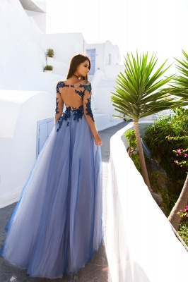 Illusion Long Sleeve Appliques Evening Dresses  Sheer Tulle Open Back Prom Dress_4
