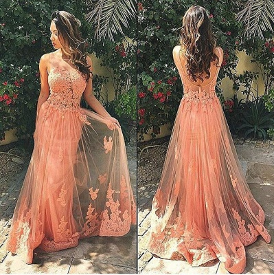 Coral Lace Tulle  Prom Dresses Open Back Sleeveless Sheath Evening Gown BA6820_3