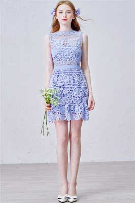 Lavender Short Lace Homecoming Dress  Summer Party Dress for Cocktail_1