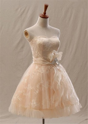 Sweetheart Champagne Lace Short Homecoming Dress Latest Tulle Plus Size Cocktail Dress_3