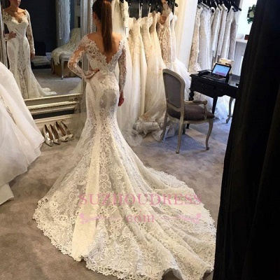 Mermaid Long-Sleeves V-Neck Lace Elegant Wedding Dress_1