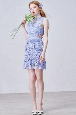 Lavender Short Lace Homecoming Dress  Summer Party Dress for Cocktail_2