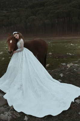 Attractive Roayl Long Sleeves Wedding Dresses High Neck Sequins Vintage Bridal Gowns Online_3