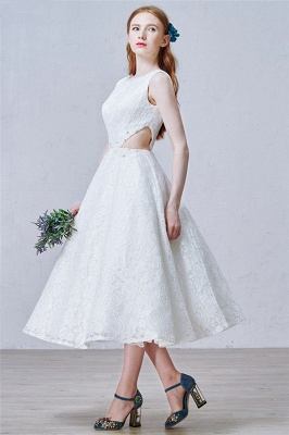 Puffy Lace Skirt  Prom Dresses Backless Tea Length New Arrival Evening Dress_5