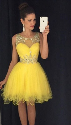 Lovely Organza Homecoming Dresses  Short Beading Crystals  Party Dress_1