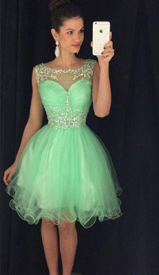 Lovely Organza Homecoming Dresses  Short Beading Crystals  Party Dress_5
