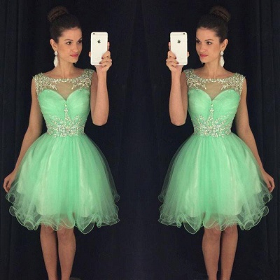 Lovely Organza Homecoming Dresses  Short Beading Crystals  Party Dress_4