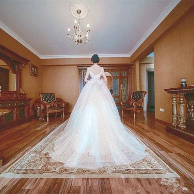 Princess Wedding Dresses Ball Gown Pearls Open Back Chapel Train Bridal Gowns_5