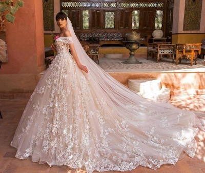 Affordable Tulle Lace Appliques Wedding Dresses Tulle Off The Shoulder Bridal Gowns Online_4