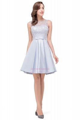 Sleeveless Short Zipper Elegant Lace Homecoming Dress_5