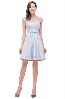 Sleeveless Short Zipper Elegant Lace Homecoming Dress_2