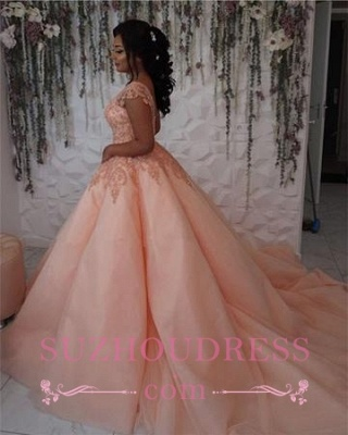 Newest Chic Long Cap-Sleeves Ball-Gown Scoop Lace-Appliques Quinceanera Dresses_6