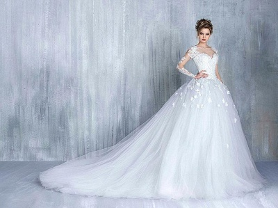 New Arrival Long Sleeve Lace Bridal Gowns Tulle Open Back Court Train Wedding Dresses_4