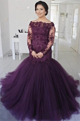See Through Lace Puffy Tulle Evening Dress | Long Sleeve Formal Dresses_1