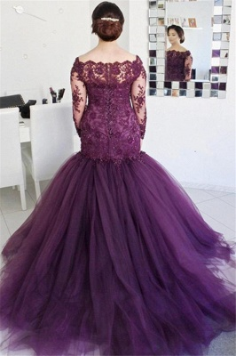 See Through Lace Puffy Tulle Evening Dress | Long Sleeve Formal Dresses_3