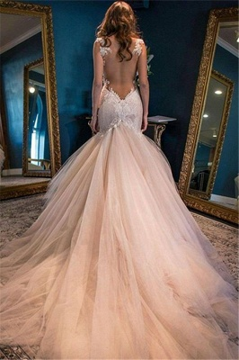 Champagne Tulle Wedding Dresses  Spaghetti Straps Lace Sheer Back Bridal Dress_3