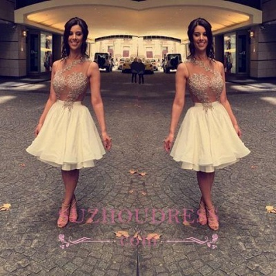 Lace Sleeveless Beaded Appliques Short Chiffon A-Line  Homecoming Dress_1