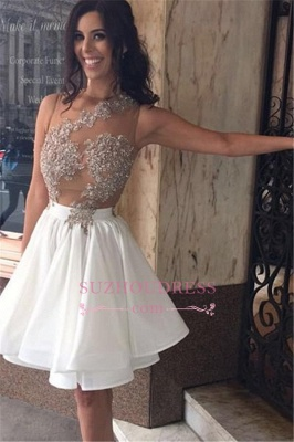 Lace Sleeveless Beaded Appliques Short Chiffon A-Line  Homecoming Dress_2