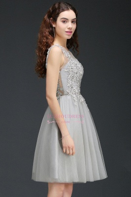 Appliques Tulle Sleeveless A-Line Silver Short Homecoming Dress_5