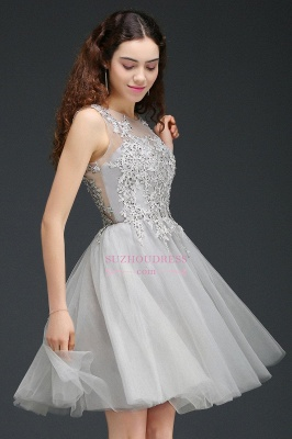 Appliques Tulle Sleeveless A-Line Silver Short Homecoming Dress_4