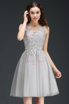 Appliques Tulle Sleeveless A-Line Silver Short Homecoming Dress_7