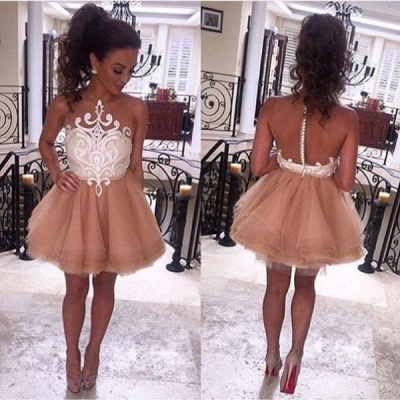 Sheer Tulle Appliques Champagne Homecoming Dresses   Short Evening Dress HC0023_3