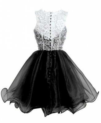 Elegant A-Line Short Lace Organza Summer Homecoming Dress_4