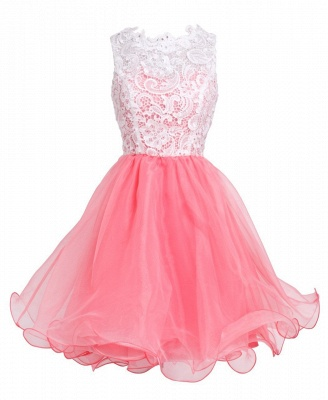 Elegant A-Line Short Lace Organza Summer Homecoming Dress_3