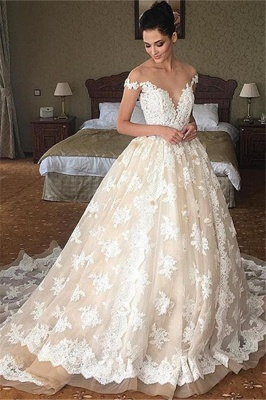 Off The Shoulder Lace Wedding Dress Champagne Tulle Open Back Ball Gown Bride Dress_1